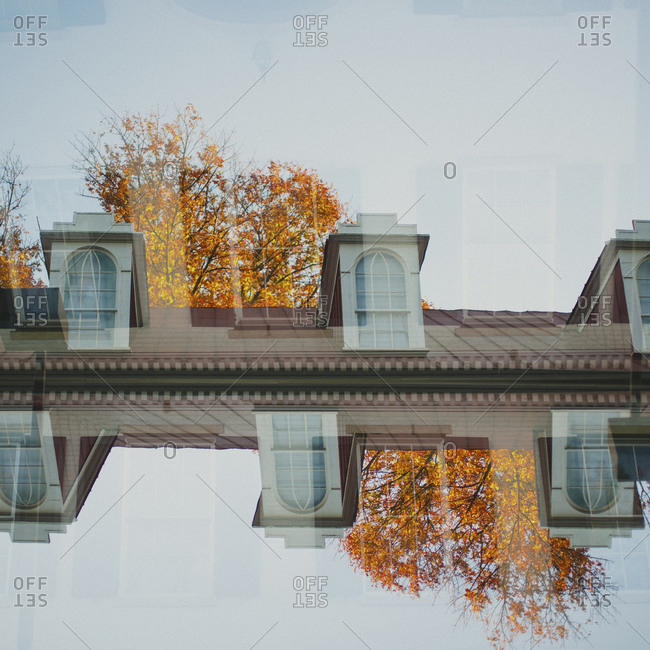 Double exposure of a street and trees