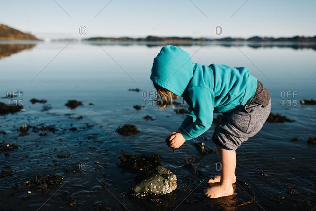 Kid picking mud up from lake