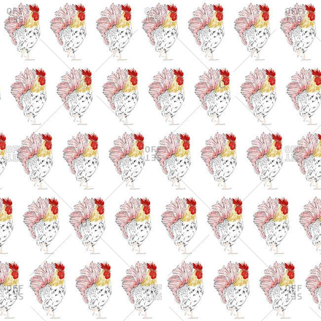 Repeated roosters on white background