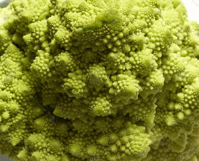 Romanesco broccoli close-up