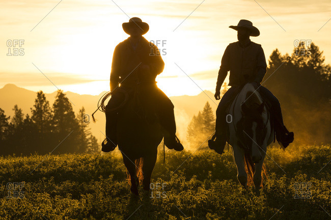 Cowboys riding in Canadian Rockies