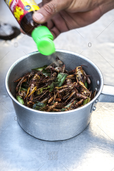 Hand of a person putting sauce on a pot of Thai cooked insects