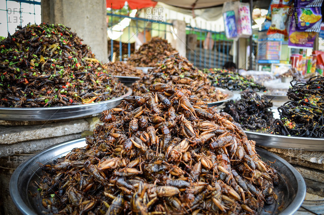Pile of insects in market