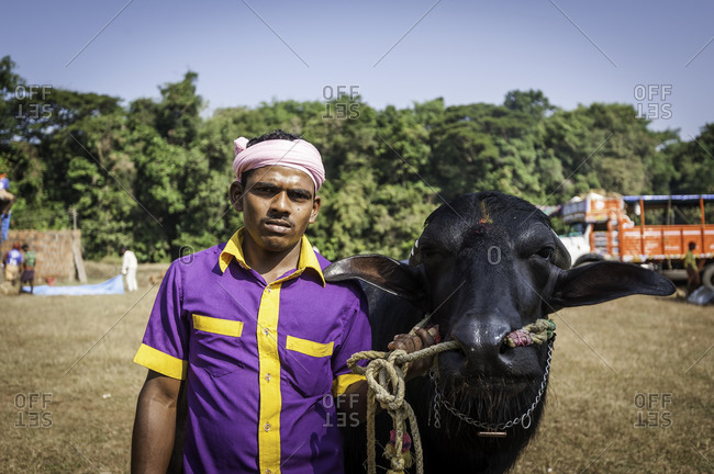 Portrait of a young man standing next to his water buffalo prepared for a Kambala race in Karnataka, India