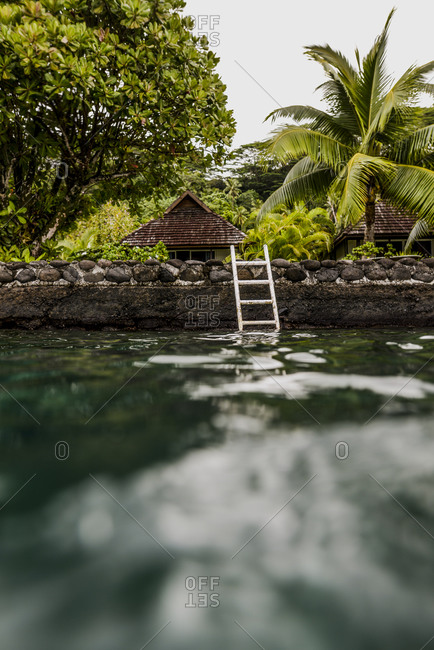 View from the water of small huts and palm trees on Moorea Island, French Polynesia