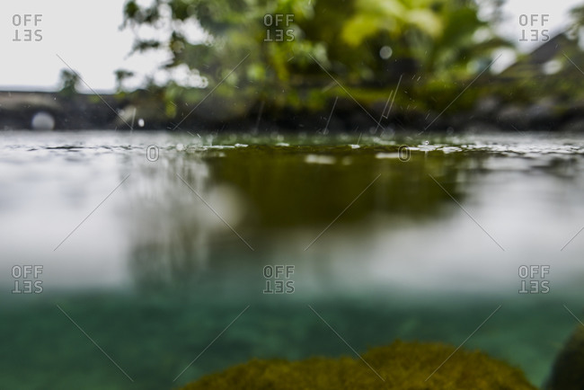 Close up of rain drops on the water's surface, Moorea, French Polynesia