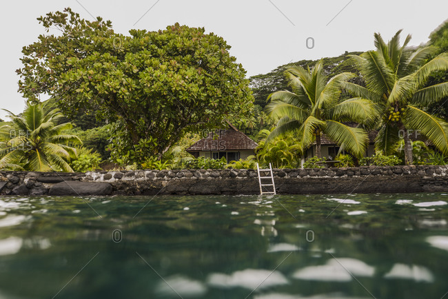 View from the water of small cottages and palm trees on Moorea Island, French Polynesia