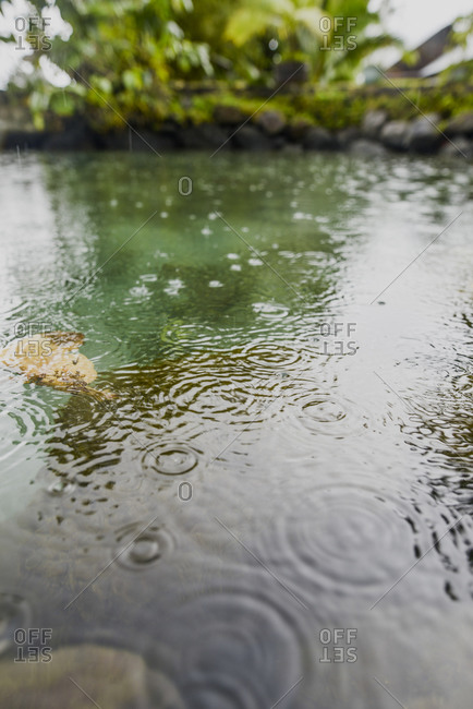 Ripples in the water from rain on Moorea Island, French Polynesia