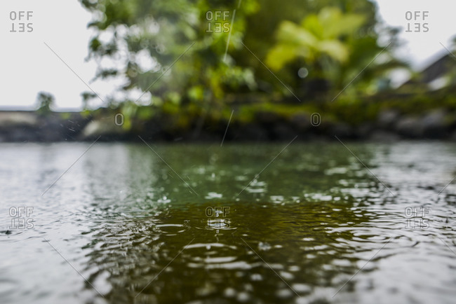 Close up of rain drops splashing on the water's surface, Moorea Island in Moorea, French Polynesia