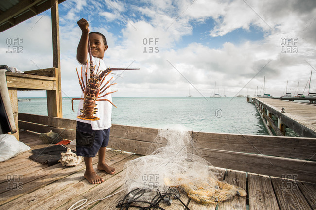 Anegada Island, British Virgin Islands, British Virgin Islands - May 12, 2014: A young boy holds up a large lobster on a dock in tropical setting