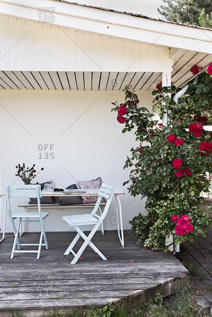 Small patio and rosebush