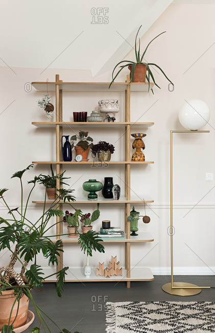 Shelf with plants in home