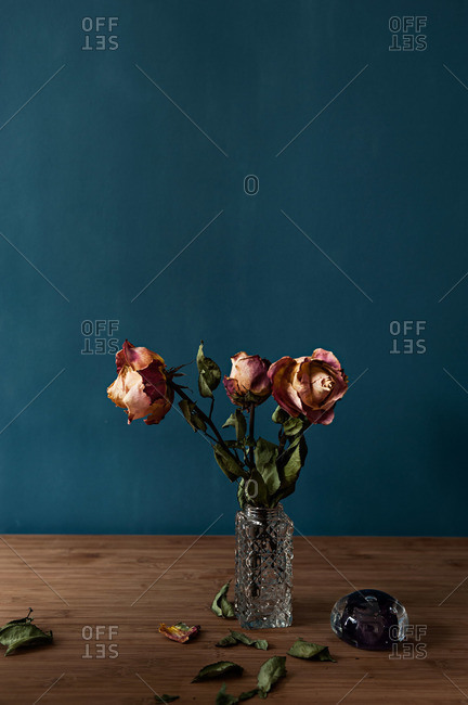 Dried roses in a vase