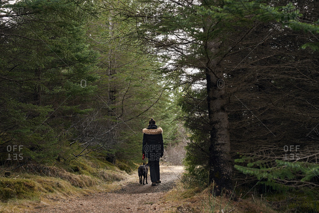 Woman walking her dog through a trail in the forest