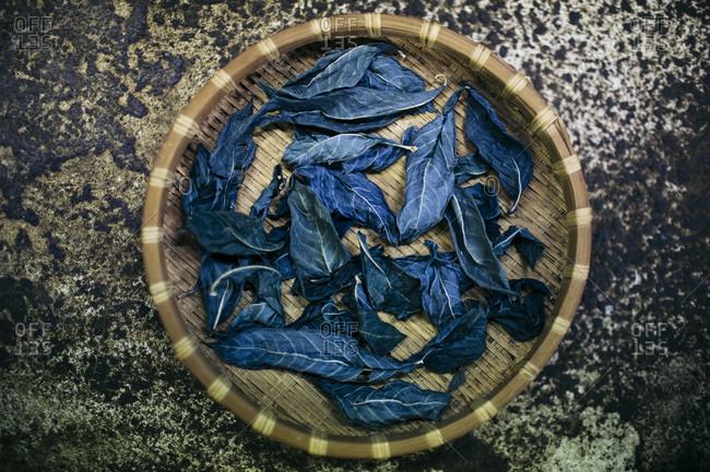 Blue indigo leaves used to dye cotton