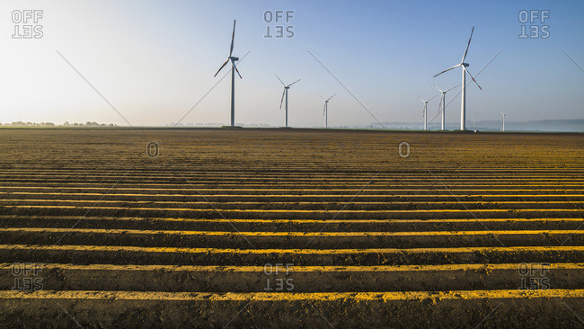 Wind turbines in crop field, Germany