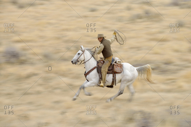 Blurred motion of cowboy on horse holding lasso galloping in wilderness, Rocky Mountains, Wyoming, USA