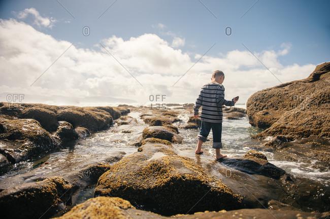 Boy exploring tide pool rocks
