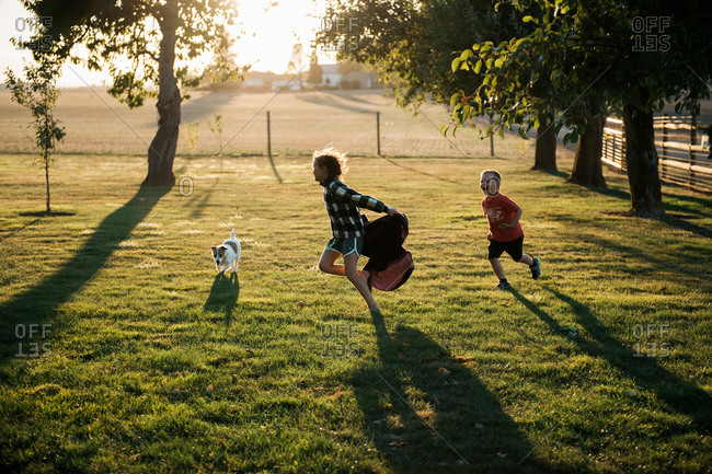 Two children running on sunlit lawn with dog