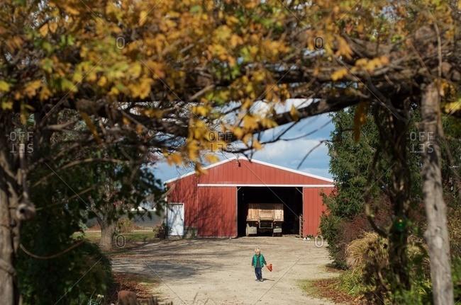 A young boy walking along a dirt driveway at a farm