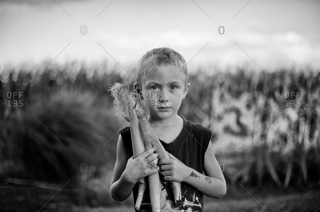 Portrait of a boy holding ears of corn on the edge of a cornfield