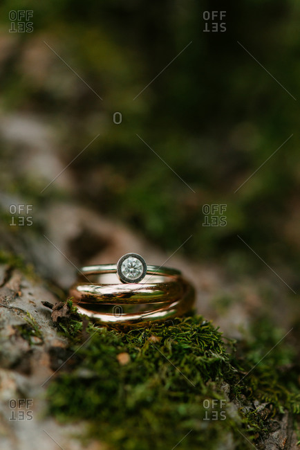 Close-up of wedding rings on a mossy log