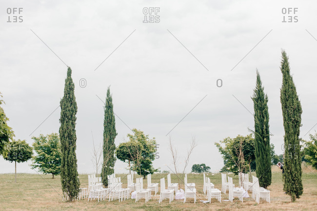 Wedding chairs arranged by cypress trees
