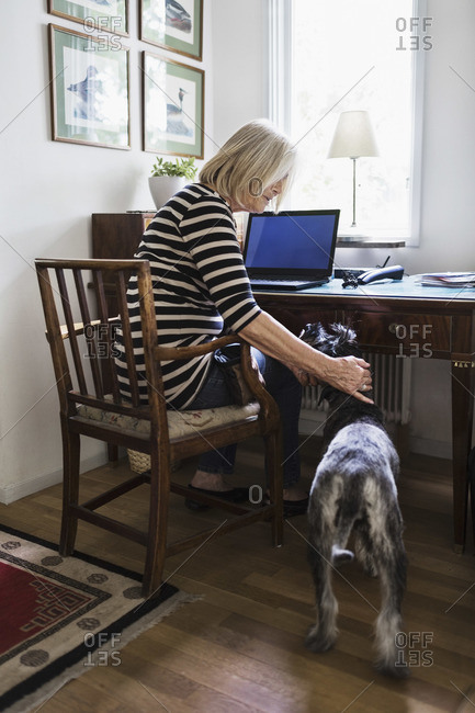 Senior woman stroking dog while sitting on chair at home