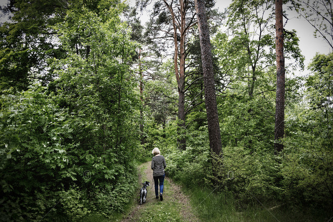 Rear view of senior woman walking with dog amidst trees