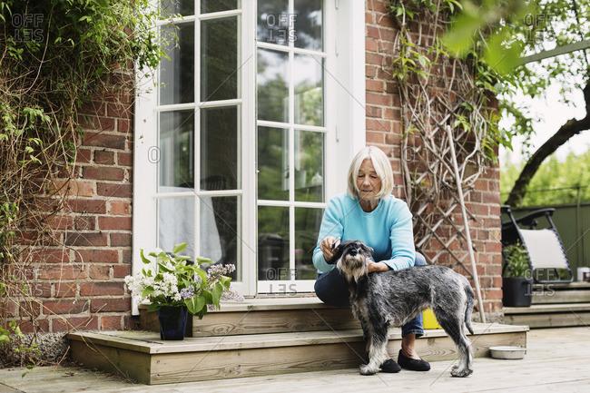 Senior woman combing dog's hair at house entrance