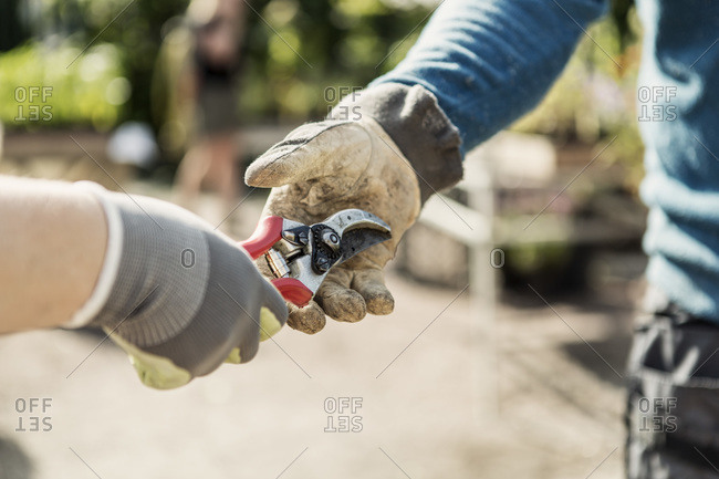 Cropped image of woman giving pliers to man at community garden
