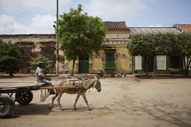 A man travels on his donkey cart in Mompox