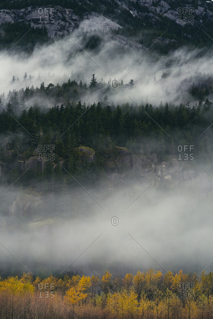 Fog rolling through forest covered mountains