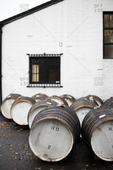 Barrels of whisky at a distillery in Scotland