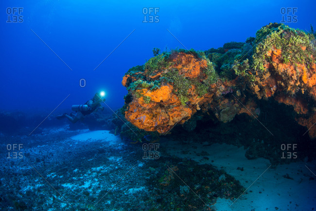 Underwater view of scuba diver investigating colorful reef, Arrowsmith Banks, Cancun, Mexico