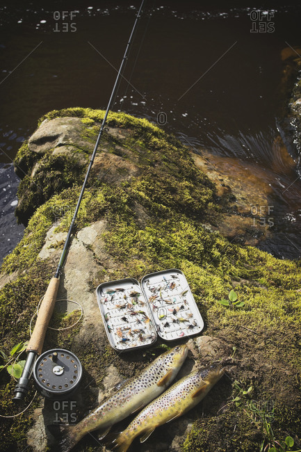 High angle view of fishing equipment and brown trouts on rock at riverbank