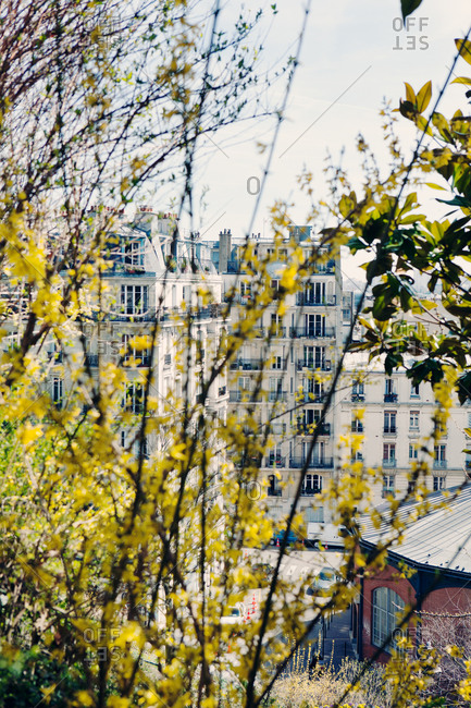 View of a building through the trees in Paris