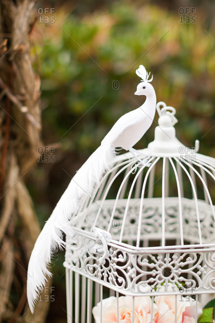 Decorative faux white bird on birdcage