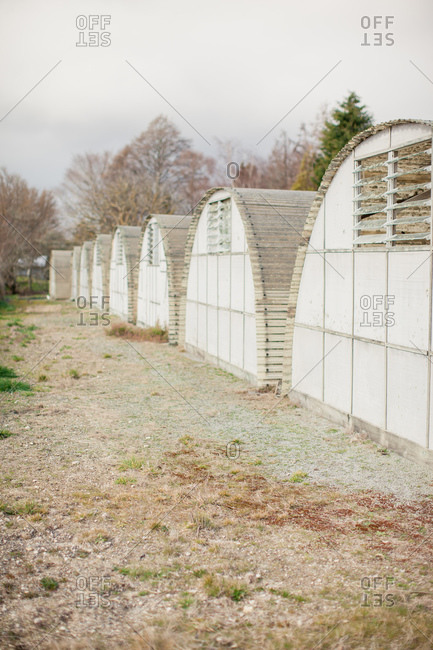 Rows of greenhouses on farm