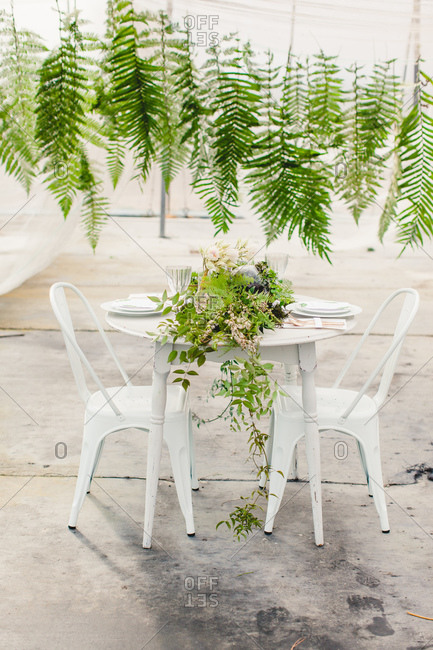 Garland of ferns leaves hangs over a table in  with floral centerpiece in greenhouse