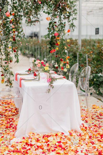 Rose petals scattered on floor at wedding reception table in greenhouse