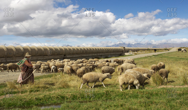 A sheep herder walking by a water pipe at a water treatment plant in Bolivia
