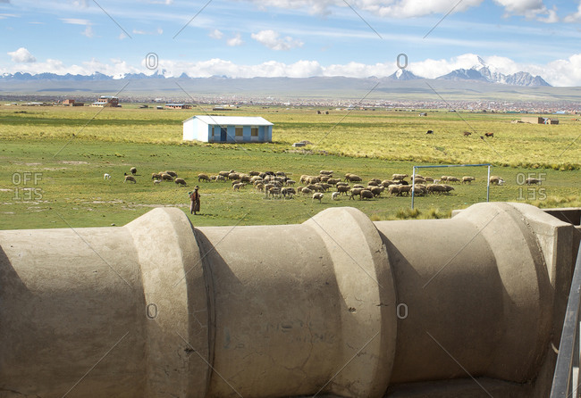 A sheep herder herding sheep by a water pipe at a water treatment plant in Bolivia