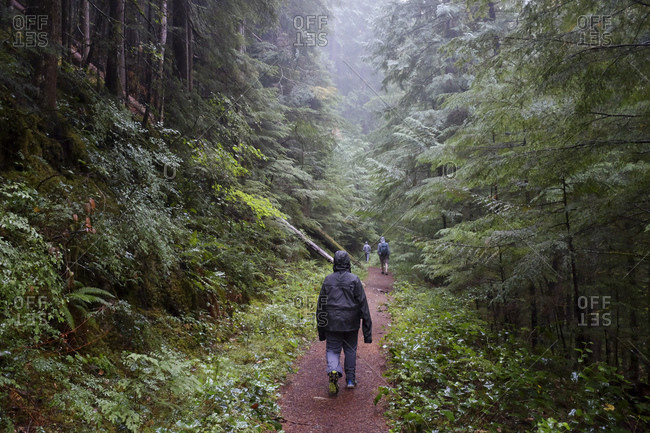 People walking along a trail in the woods