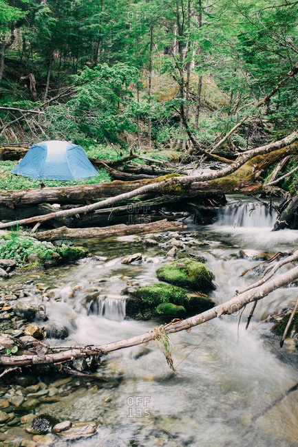Tent pitched alongside a wooded stream