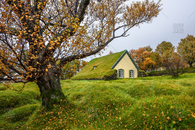 Hofskirkja Church with turf roof at Hof, Iceland