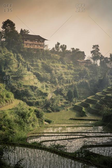 Longsheng terraced rice fields, Guangxi Zhuang, China