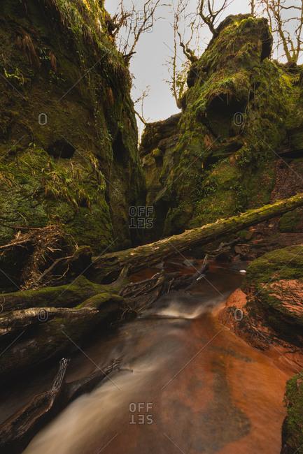 River in mossy ravine in Scotland