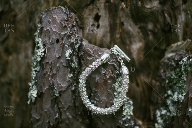 Diamond bracelet hanging on tree bark
