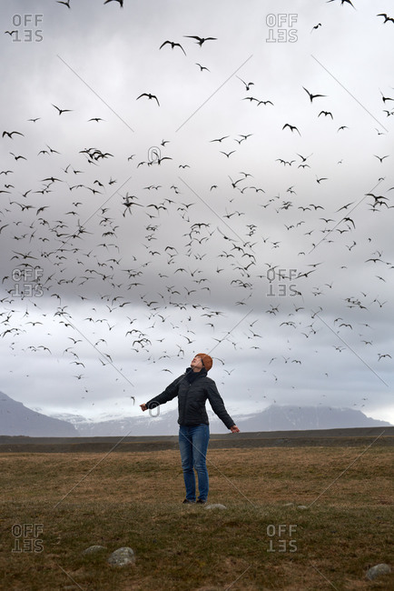Woman with her arms out looking up at a large flock of swallows birds flying around her in a field